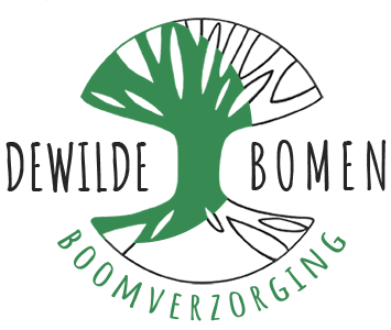 Dewildebomen Boomverzorging regio Antwerpen